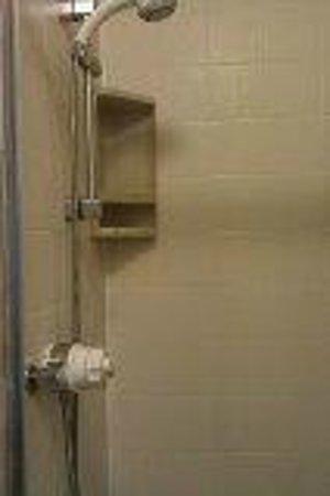 Kirkwood Guest House : shower