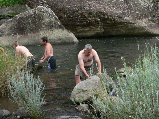 Mountain Splendour Eco-Resort: Swimming in the river