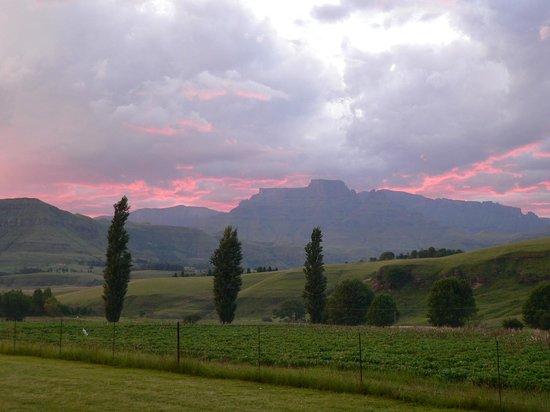 Mountain Splendour Eco-Resort: Berg view