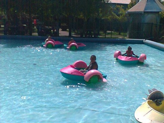 Bugz Family Playpark: They've always wanted to go paddle boating