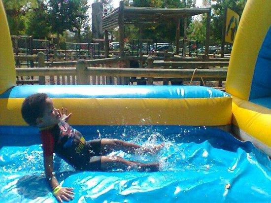 Bugz Family Playpark: My monkee having a blast