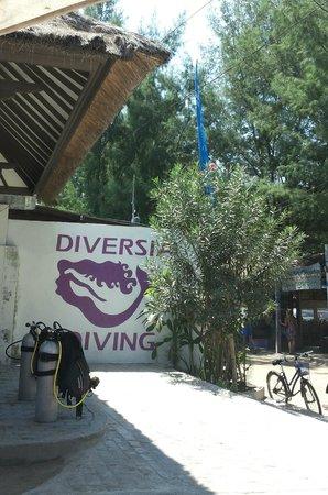 Diversia Diving: il loro logo.