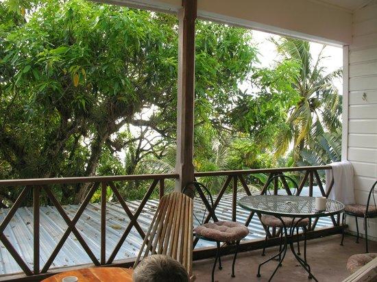 BlueBelize: tree top balcony