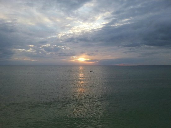 Pointe Estero Resort: One of many beautiful sunsets....