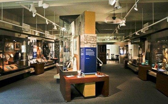 Leeds City Museum: Leeds Stories