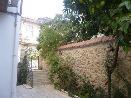 White Garden Pansion: Cour intérieure