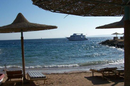 Sun & Sea Hotel: Sun & Sea