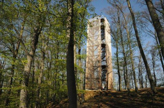 Träegerverein Cheisacherturm