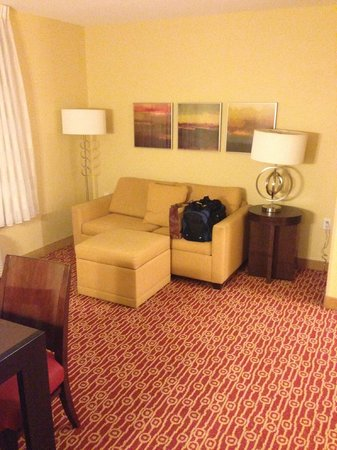 TownePlace Suites Tampa Westshore/Airport: Couch