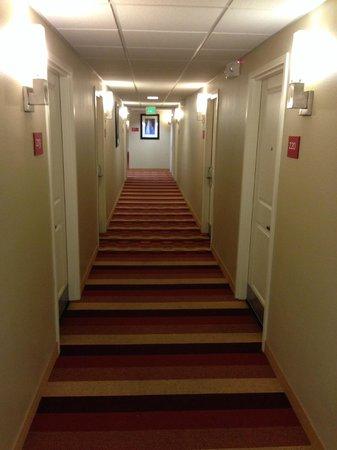 TownePlace Suites Tampa Westshore/Airport: Hallway