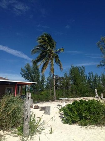 Island Resort and Golf Club : lunch on the beach