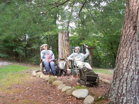 All Seasons Cabin Rentals: The Welcome Committee