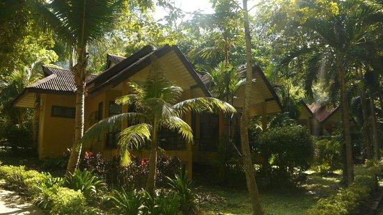 Tonsai Bay Resort : Rooms
