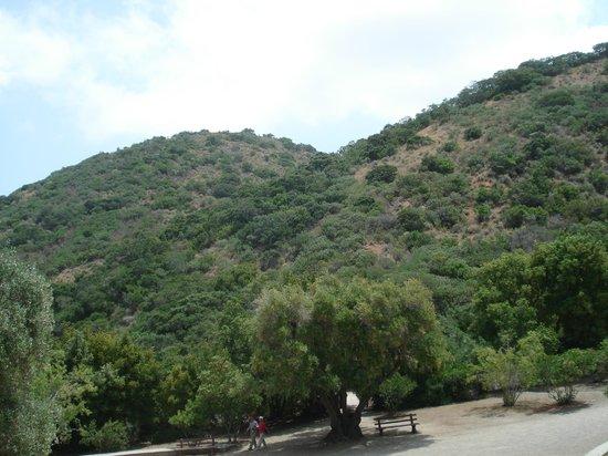View From The Memorial Picture Of Wrigley Memorial Botanic Garden Avalon Tripadvisor