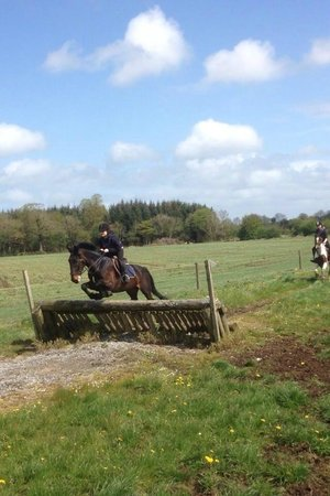 Flowerhill Equestrian Centre: having fun!