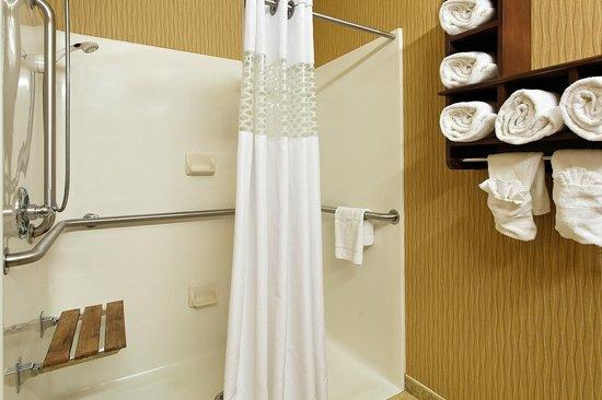Hampton Inn Ottawa Starved Rock Area : Guest Room Bathroom