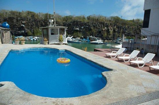 Hotel Castro: Swimming Pool