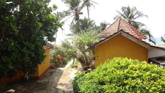Shanthi Beach Resort: Вид с балкона, вдали беседка для завтрака и выход к океану