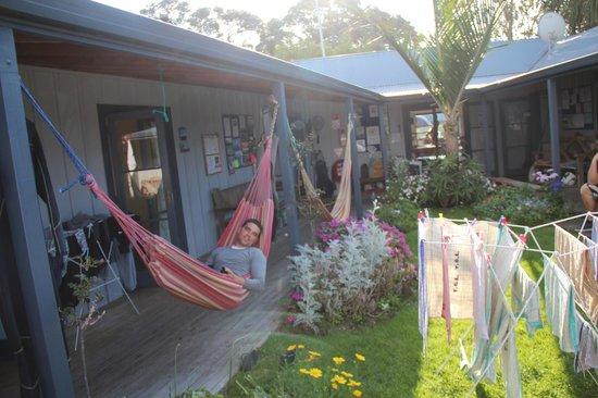 Raglan Backpackers and Waterfront Lodge: Hammock