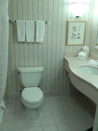 Hilton Garden Inn Portland Beaverton: Bad