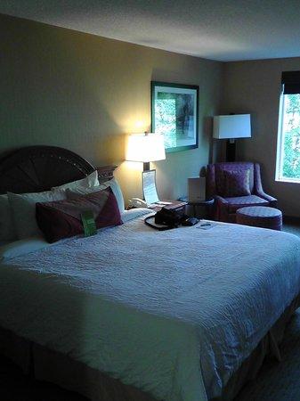 Hilton Garden Inn Portland Beaverton: Priceline Zimmer