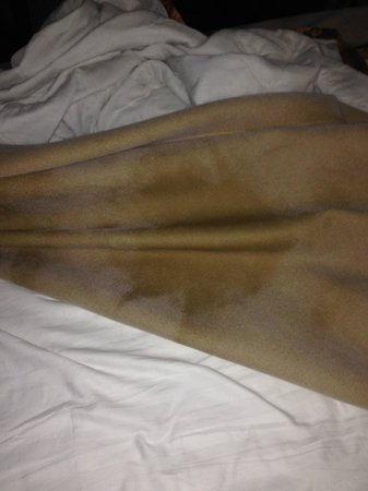 Coachway Inn: Dirty, stained blanket - under side of blanket