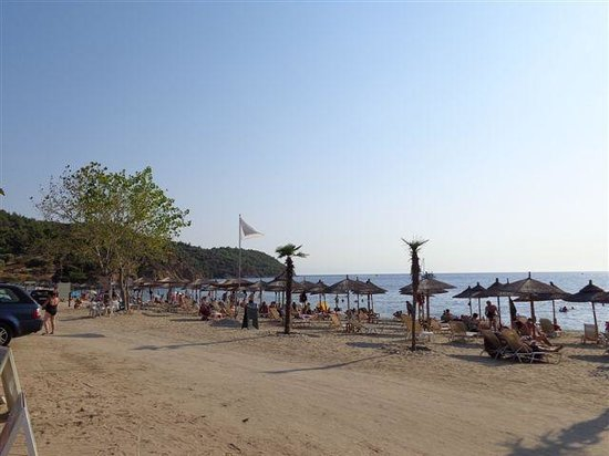 Atrium Hotel Thassos: The Beach