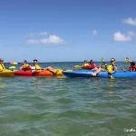 Calabash Eco Adventures: Kayak Eco Tour