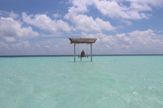 Maayafushi Island Resort Booking