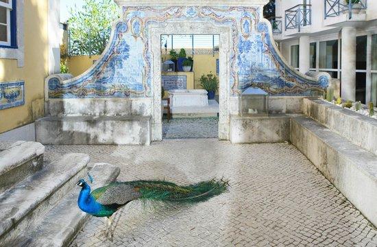 Solar Do Castelo: Pateo