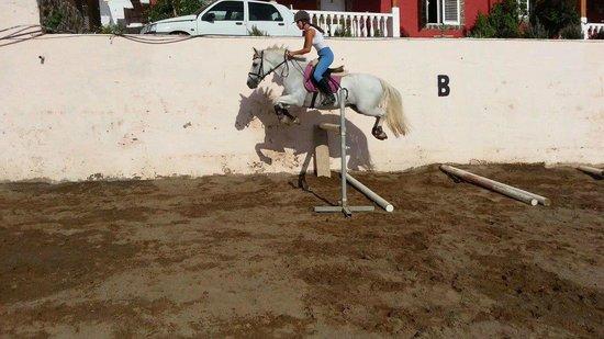 El Salobre Horse Riding : Jumping