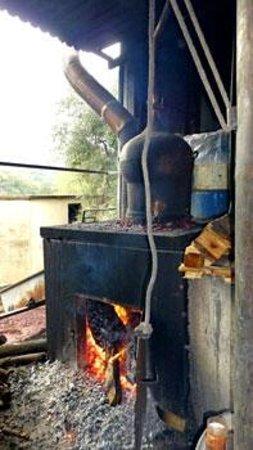 Δρακόνα, Ελλάδα: Kretaraki (Tsigudia) brennen