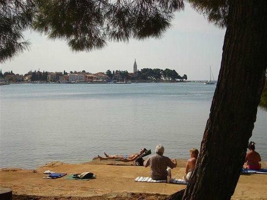 Villa Baissero: beach
