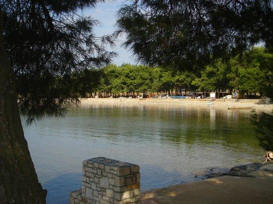 Villa Baissero: part of the beach