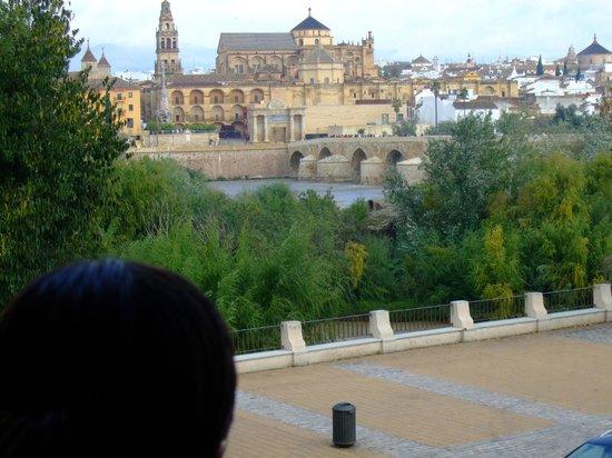 NH Cordoba: Vista de la catedral desde la habitación