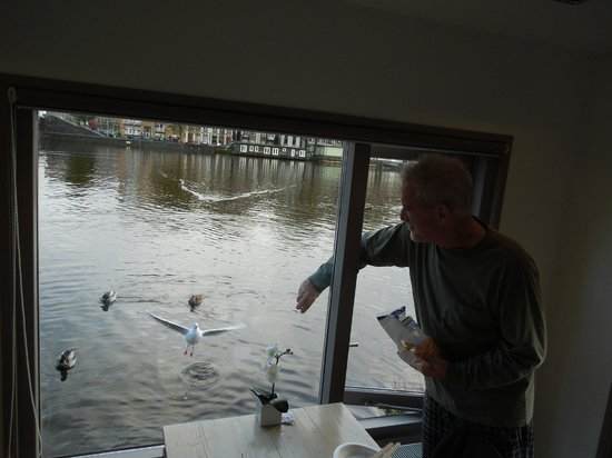 Houseboat Little Amstel: Feeding the hungry flock of feathered friends