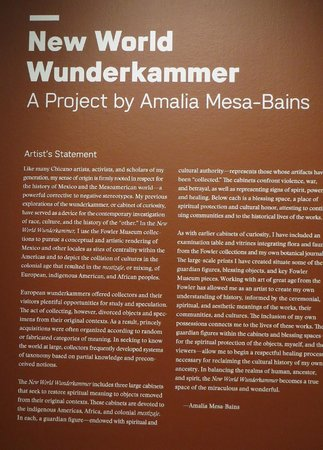 University of California, Los Angeles (UCLA) : Wunderkammer by Amalia