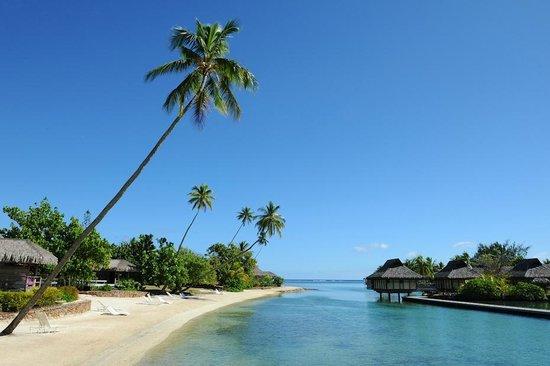 InterContinental Moorea Resort & Spa: View of calm Lagoon