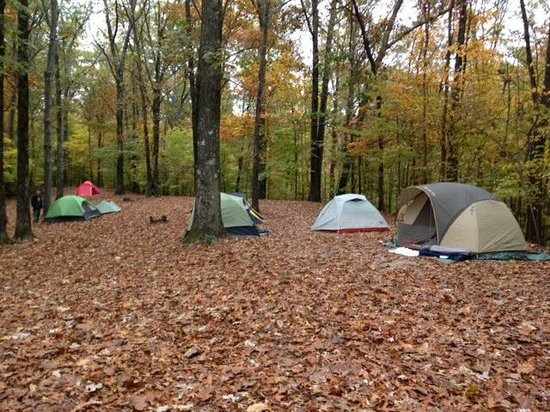 Fort Pillow State Park: Tents assembled at Group Camp