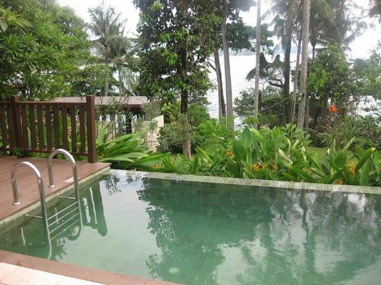 Centara Villas Phuket: View from the plunge pool villa