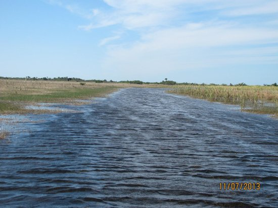 Capt Mitch's - Everglades Private Airboat Tours: The everglades