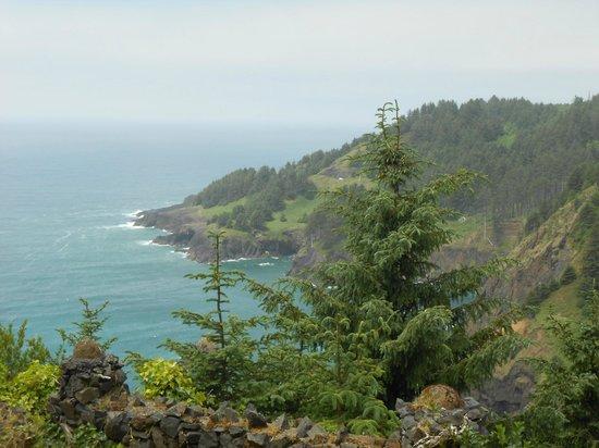 Inn at Otter Crest: Beautiful Views