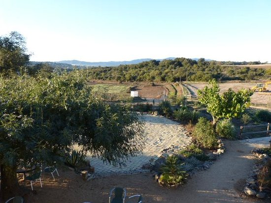 Masia la Pineda B&B- apartments: what a view