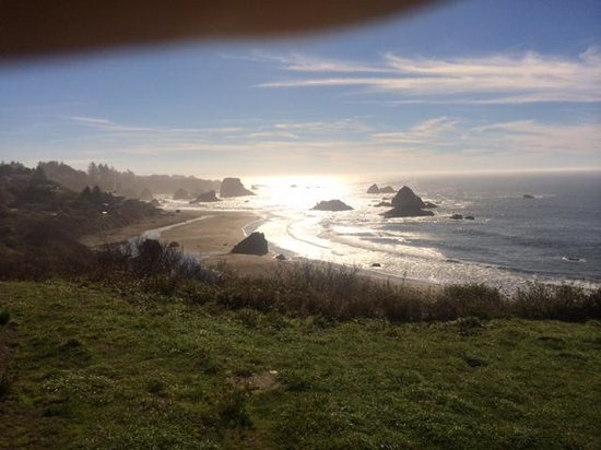 Lady Bird Johnson Grove: Views like this all along the coast road from Eureka to Brookings, OR