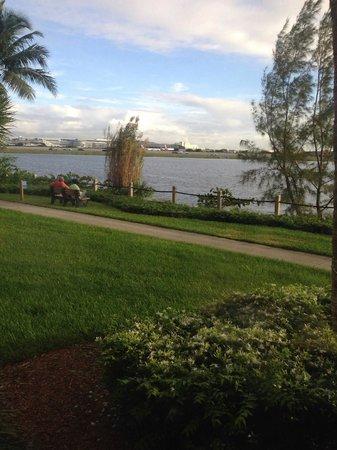 Hilton Garden Inn Miami Airport West: Hermosa vista desde el Comedor