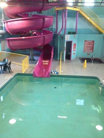 Travelodge Belfast Central: piscine intérieur