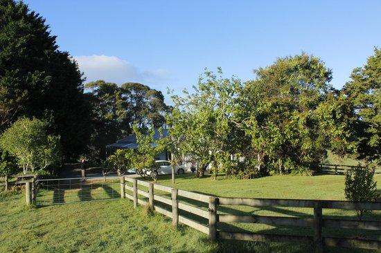 Kahoe Farms Hostel: Boerderij op de heuvel, omgeven door weide en bomen