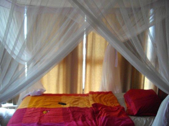 Q-Bar & Guest House : Chambre lit jour
