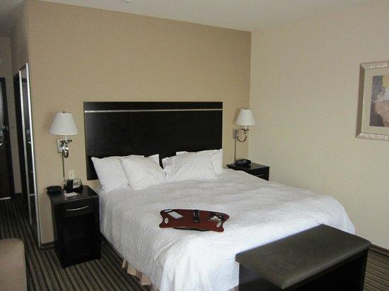Hampton Inn & Suites Childress: bed