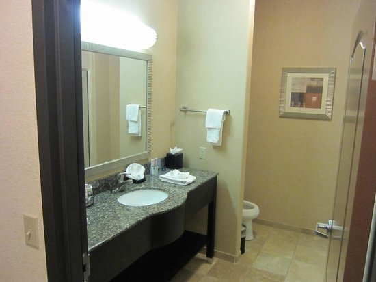 Hampton Inn & Suites Childress: bathroom